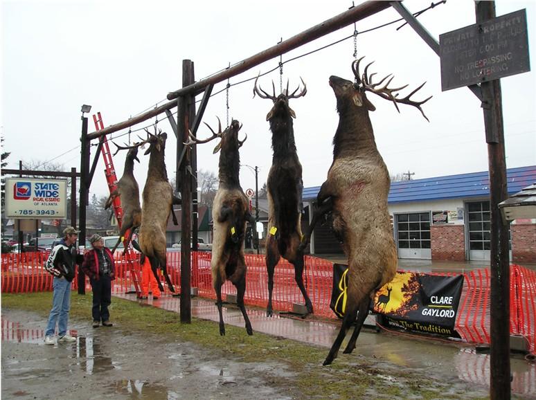 2003 Atlanta Elk Pole Contest